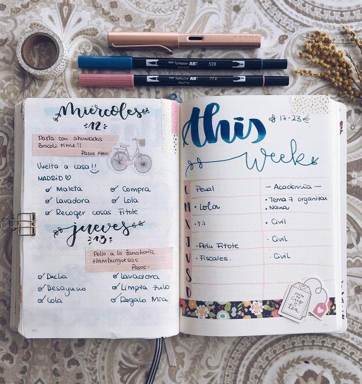 Planner, bullet journal days.