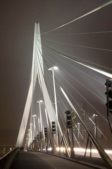 Erasmus Bridge, Rotterdam, Netherlands- Did a report on it; had to give oral presentation as we were crossing
