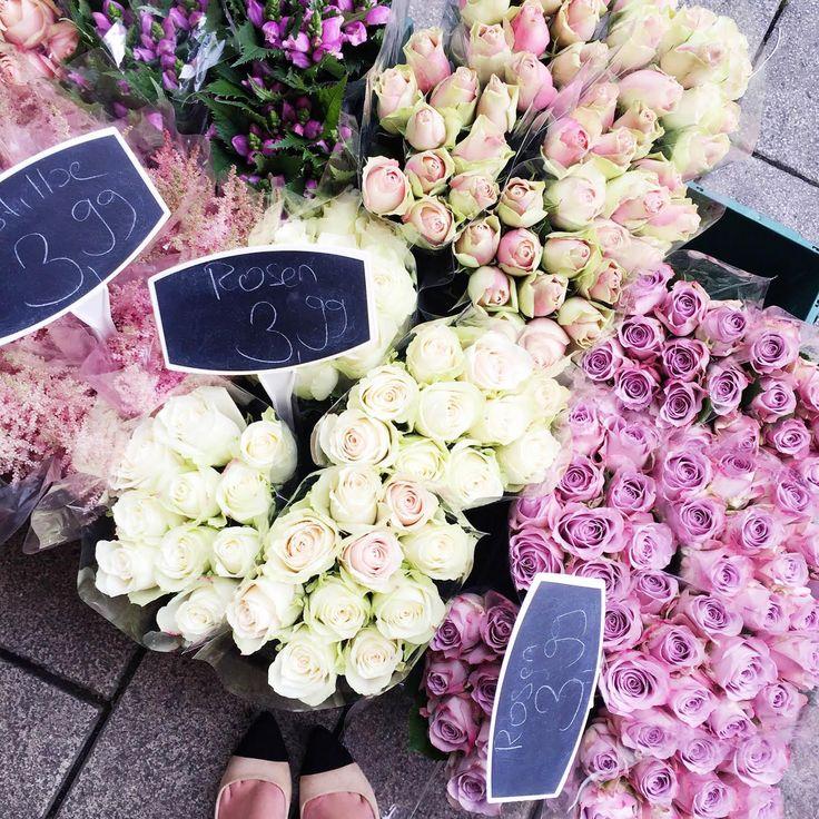 flower-roses-corner