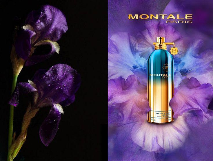 MONTALE So Iris Intense   jest elegancką kompozycją, w której pierwsze skrzypce gra zmysłowy irys. Jego obezwładniający czar podkreśla klasyczna, szlachetna baza z sandałowca i białego piżma.