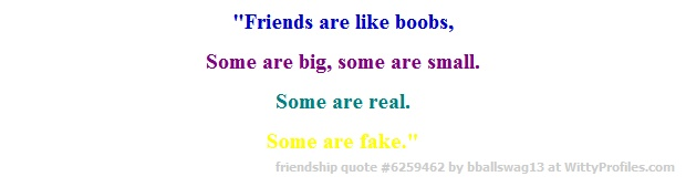 """""""Friends are like boobs, Some are big, some are small. Some are real. Some are fake.""""  - Witty Profiles Quote 6259462 http://wittyprofiles.com/q/6259462"""