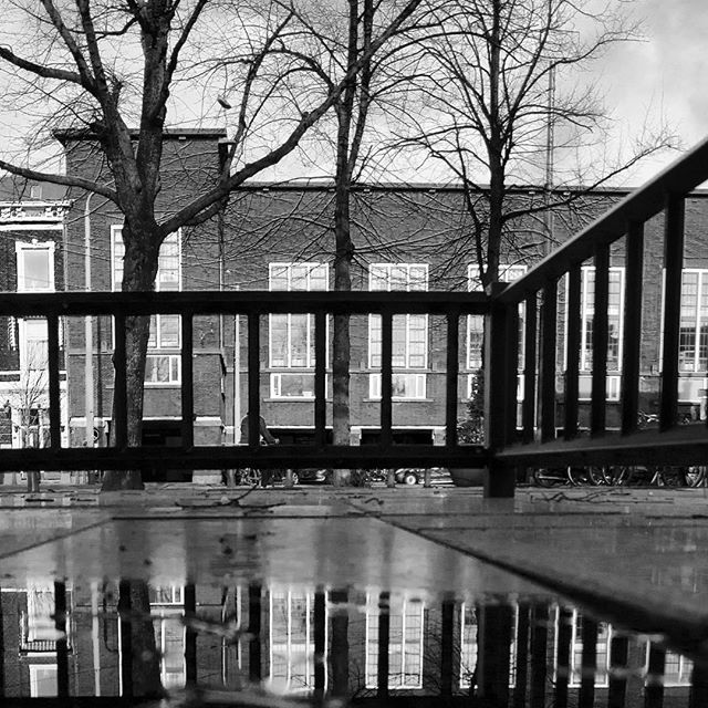 #denhaag #monument #reflection #archidaily #architecturelovers #architecture #city #cityview #urban #travel #buildings #travelgram #instadaily #picoftheday #wow #amazing #bnw #bnw_society #bnw_captures #blackandwhite #blackandwhitephotography #blacknwhite_perfection #bw #monochrome #netherlands #holland #lines #geometry #igdaily #trees by patdenengel. bw #blackandwhitephotography #amazing #blackandwhite #wow #travelgram #bnw #travel #netherlands #denhaag #archidaily #architecture #trees…