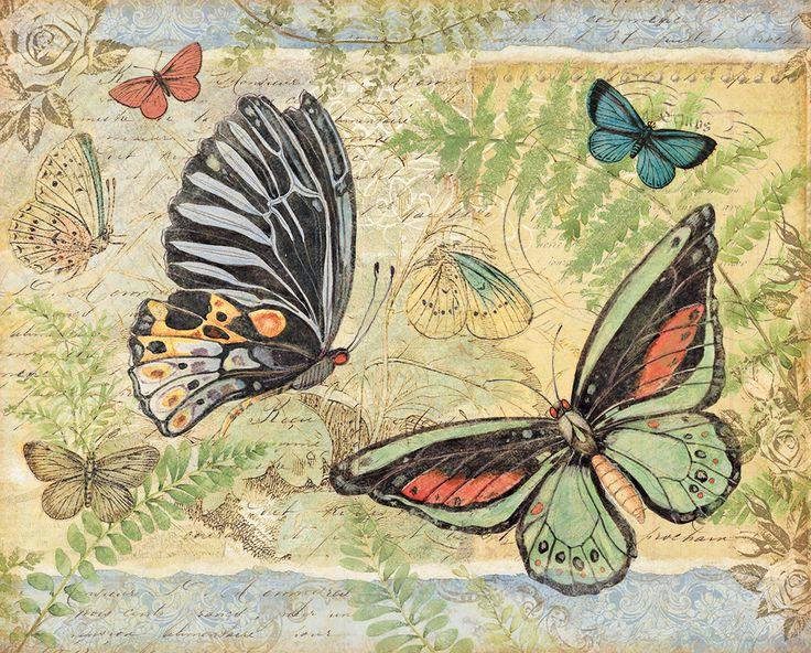 Lang Calendar Wallpaper : Best images about aℜ ⊱animals my bird house⊰ on pinterest