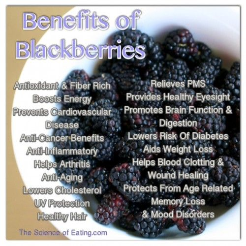 Benefits Of Blackberries | You can find blackberries at most grocery stores, so it's easy to reap their many health benefits, as they are an excellent source of some key nutrients that combat chronic disease.