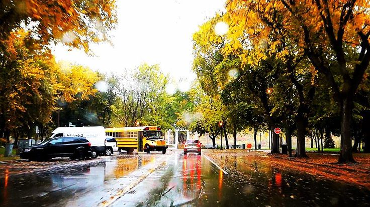 #Autumn in #YXE is the absolute BEST!!    -- tags -- #photo #photos #pic #pics #picture #photographer #pictures #snapshot #art #beautiful #instagood #picoftheday #photooftheday #color  #photoshoot #photodaily #photogram #hadlen #hadlenvlog #magic #hypnosis #magician #hypnotist #mentalist #illusion #mentalism #vlog