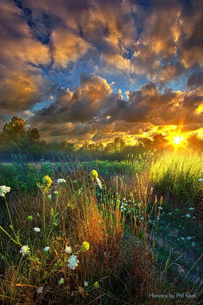фасоли фото красивых утренних пейзажей была