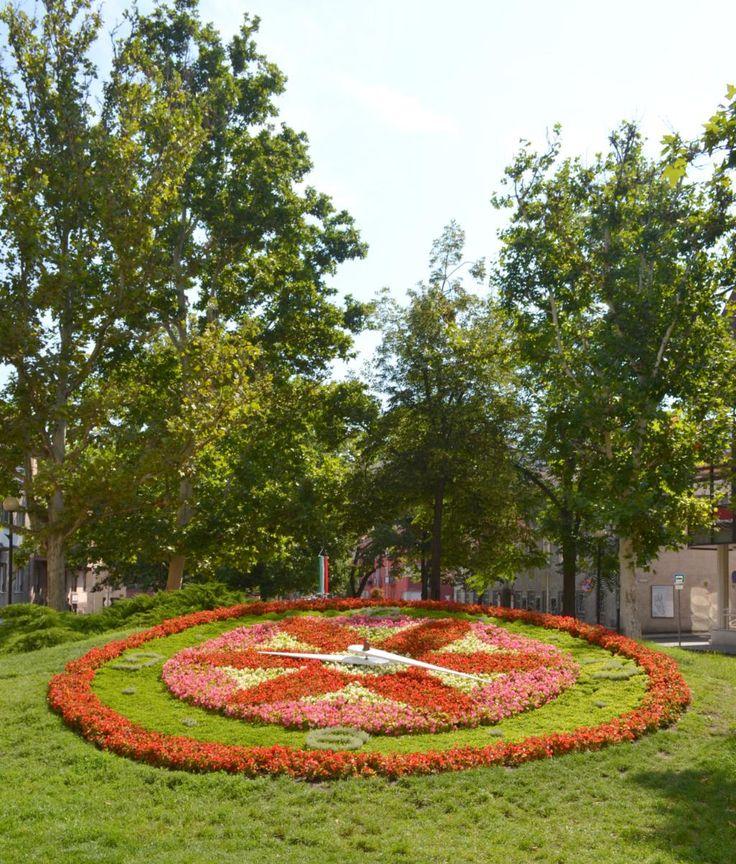 Viragora Flowerclock - Szekesfehervar, Hungary