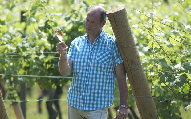 Chapel Down Group, the Kentish winemaker, says its grape harvest more than   doubled this year