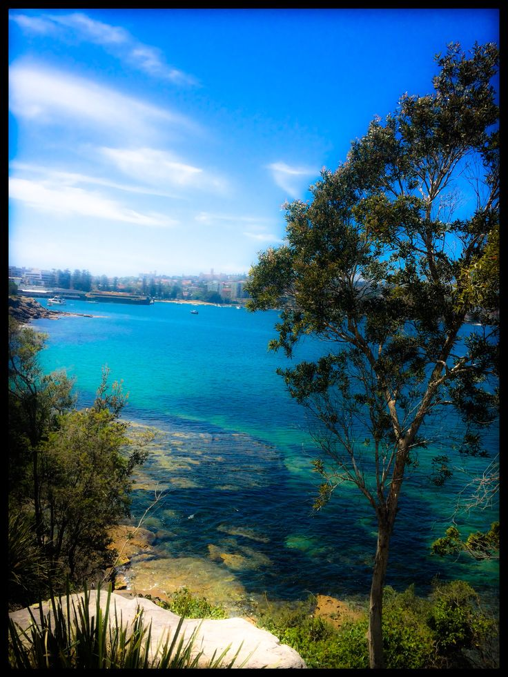 Walking from Fairlight to Manly Sydney NSW Australia.