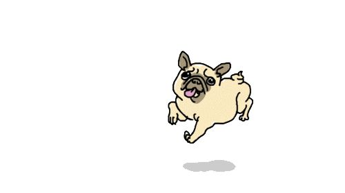 A random collection of adorable gifs that will make you smile.