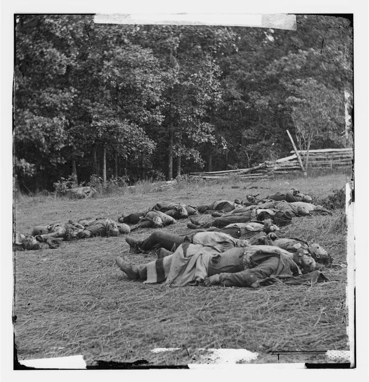 Civil War Photos - 549. Bodies of Confederate Soldiers Killed on July 1, Collected Near the McPherson Woods - Gettysburg, PA, July 1863
