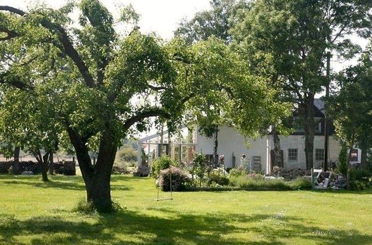 Jardim Gotland Burganland fazenda;  Gardenista