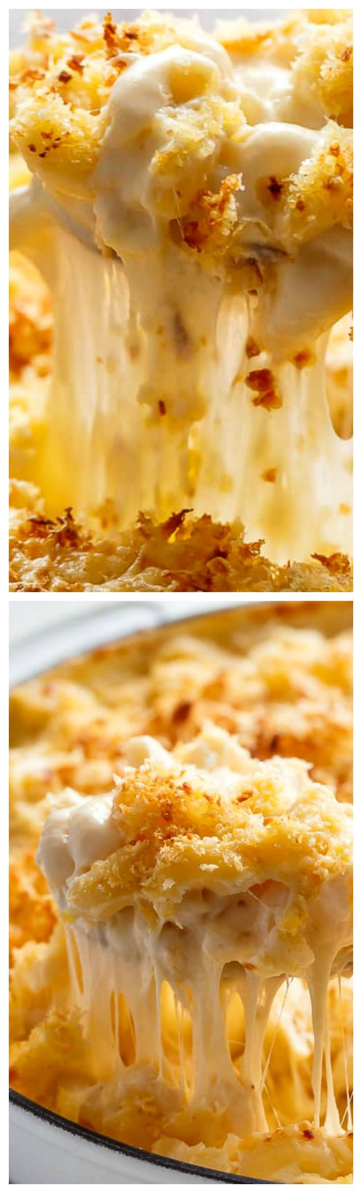 Garlic Parmesan Mac And Cheese ~ Better than the original... A creamy garlic parmesan cheese sauce coats your macaroni, topped with parmesan fried bread crumbs, while saving some calories!