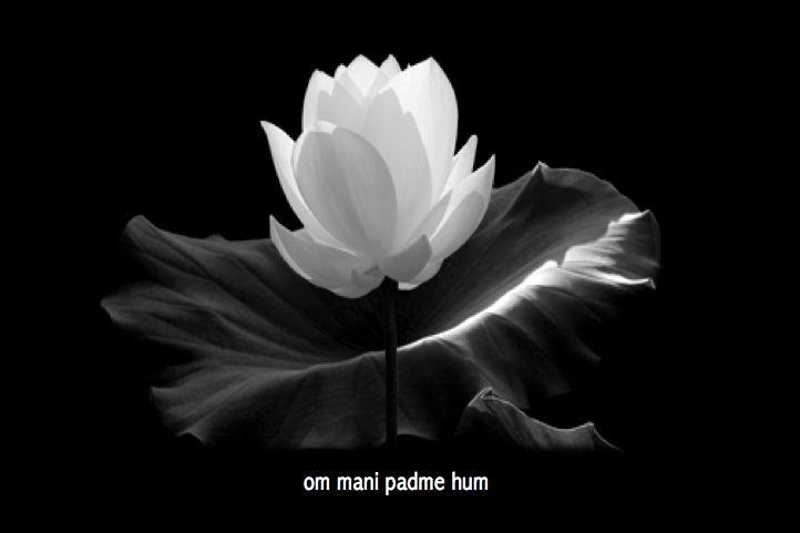 om-mani-padme-hum.jpg (722×481)