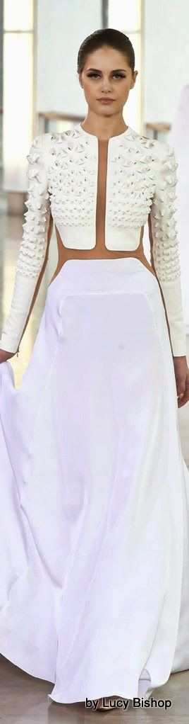 Lucys blog the haute stream...: Stéphane Rolland Spring Summer 2015 Haute Couture ~ PFW