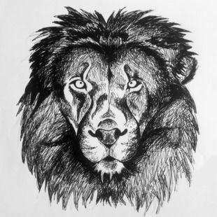Dessin de t te de lion dessins pinterest - Tete de lion dessin facile ...
