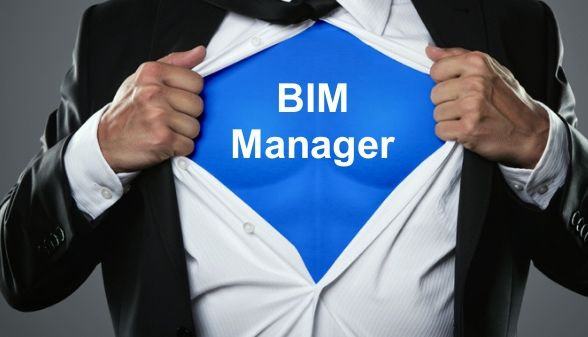 Yes, your firm needs a BIM Manager.