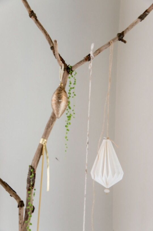 "This natural decoration idea is from our feature ""Gifts from Nature"""