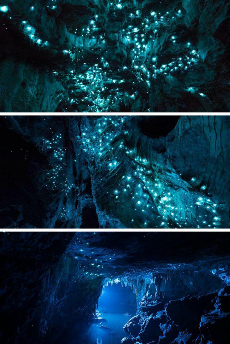 Des grottes remplies de vers luisants en Nouvelle-Zélande http://news.pixelistes.com/laissez-vous-eblouir-par-ces-vers-luisants/