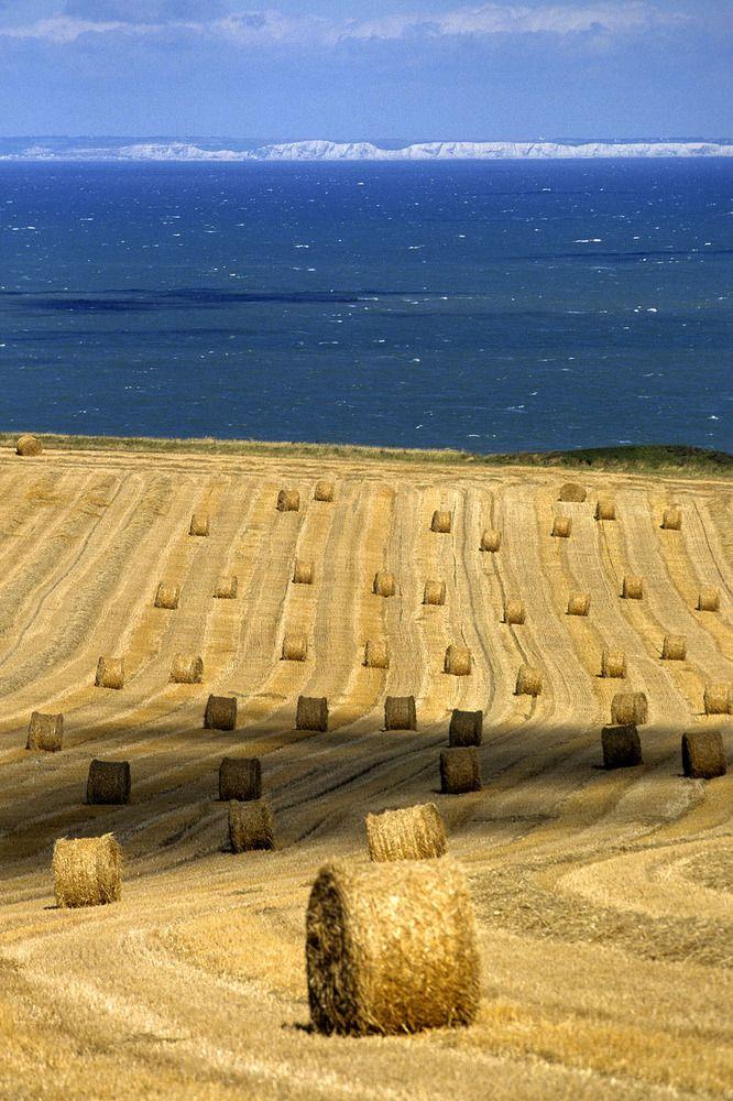 Les côtes d'Angleterre vues depuis le village d'Escalles