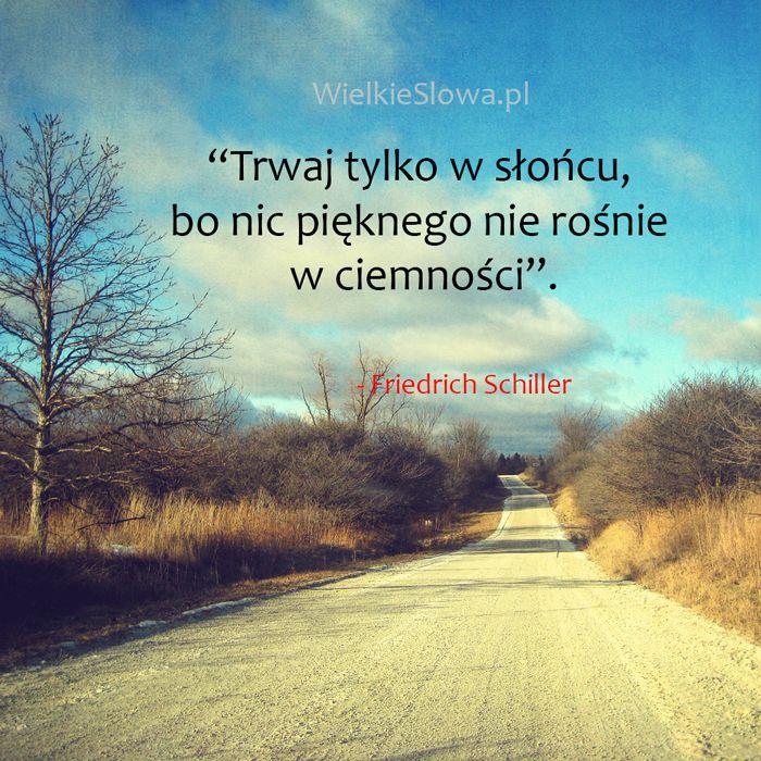 Trwaj tylko w słońcu, bo... #Schiller-Fryderyk,  #Piękno, #Różne, #Słońce