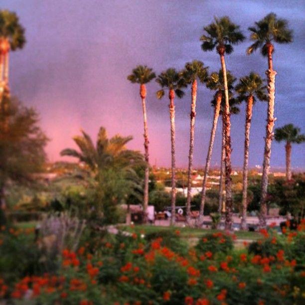 Image Of Sunny Arizona Pools: 12 Best Tucson Resort Recreation Images On Pinterest