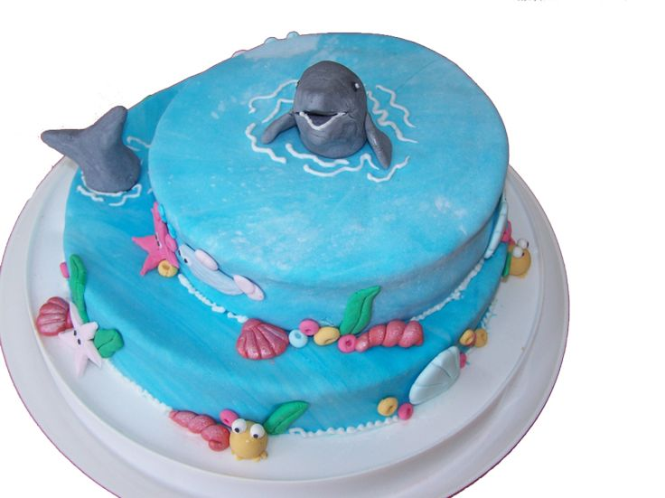 dolfijn taart