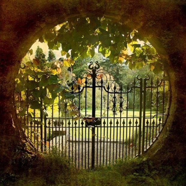 Really cool garden gates