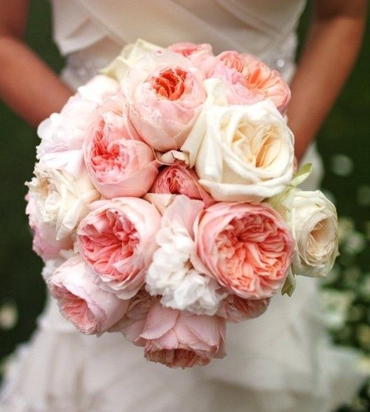 Love the flowers! So gorgeous!  English Rose, Rose Bouquet