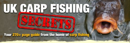 Carp Fishing Tips - Do you want to catch more carp? Get tips, tricks and techniques on how to catch carp.