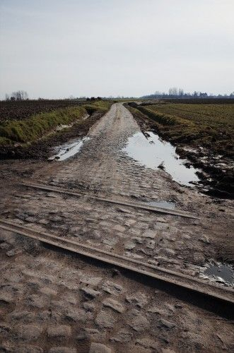 12 pictures that show just how tough the Paris-Roubaix cobbles are