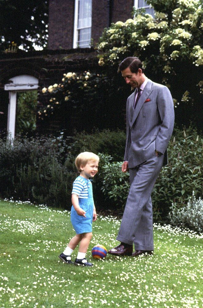 Two Princes: Prince William and Prince CharlesPrince William