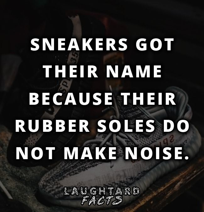 Fact About Sneakers | Facts, Sneakers, Memes
