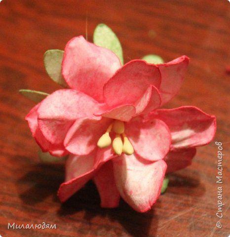 Мастер-класс Скрапбукинг Мои листочки и цветочки по просьбе творящих и вытворяющих Бумага Гуашь фото 32