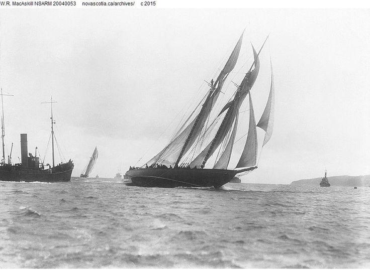 17 best images about bluenose schooner on pinterest. Black Bedroom Furniture Sets. Home Design Ideas