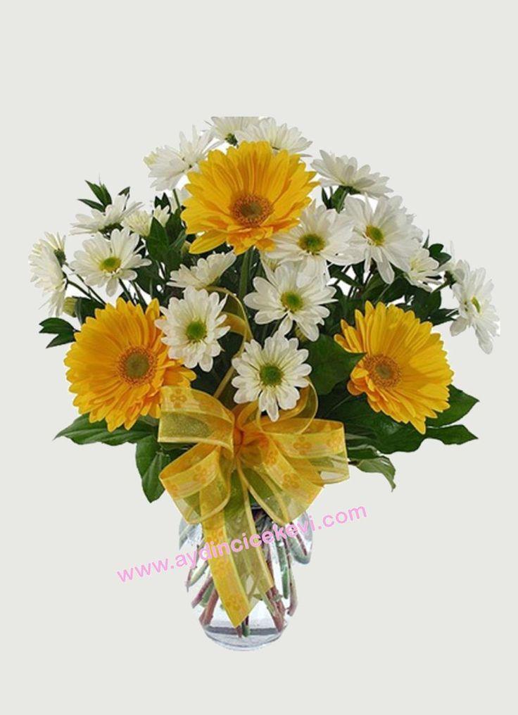 http://aydincicekevi.com/aydin_cicekci_kusadasina_cicek_gonder-Vazoda_Kir_Papatyasi-150 Aydın ve ilçelerine çiçek