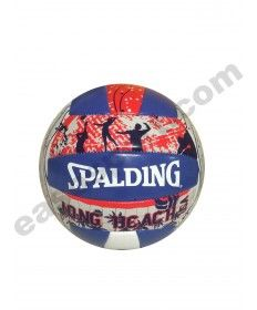 SPALDING-BALON VOLEY PLAYA LONGBEACH  72-335Z