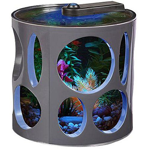 Best 25 small fish tanks ideas on pinterest aquatic for Fish aquarium supplies