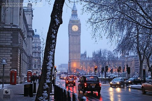 gorgeous Westminster