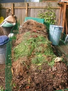 100 things to compost (never thought to compost dryer lint!)