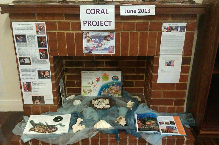 Coral Project Documentation - via Natural Inspired Environments ≈≈