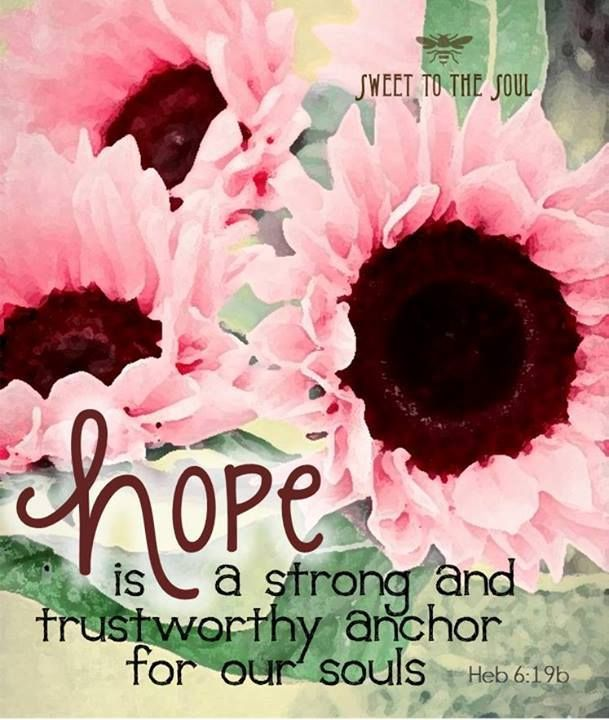 Heb 6:19 ... Hope in Jesus does not disappoint. (Rom 5:5)