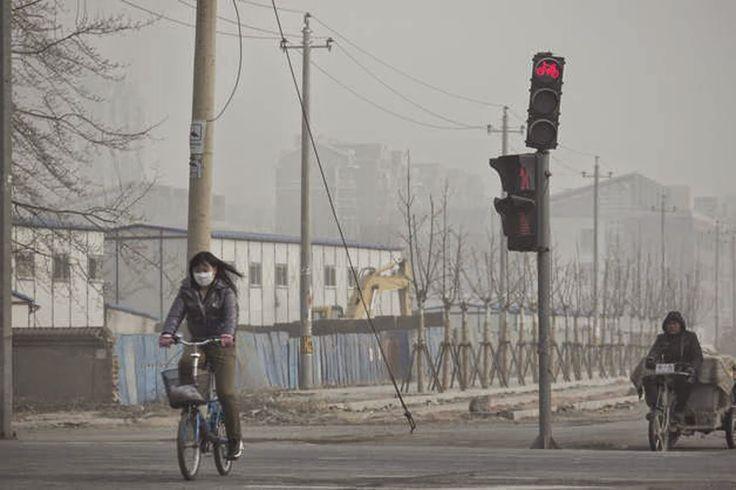 AIRLIFE MUNDIAL te dice. Los principales contaminantes asociados a la combustión son partículas, SO2, NOX, CO e hidrocarburos. Entre el segundo grupo de emisiones se encuentra un gran número de contaminantes, de muy variado nivel de impacto en la salud. http://airlifeservice.com/