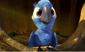 Baby Blue from Rio the movie :) i cant believe rio 2 is coming :')