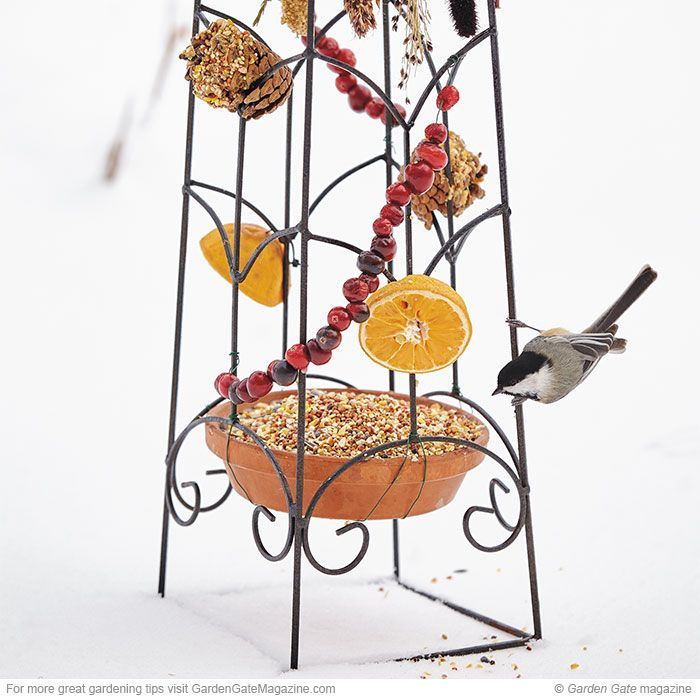 Bird-feeding obelisk | Use important energy sources to attract more birds and keep them in your yard longer.