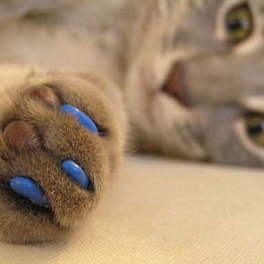 zachte+nagel+caps+met+lijm+voor+honden+katten+klauwen+-+20+stuks+/+pack+(xs-l,+diverse+kleuren)+–+EUR+€+3.52