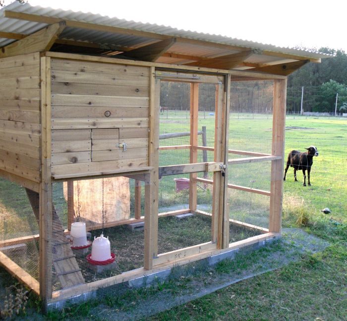 421 best Chicken Coops images on Pinterest