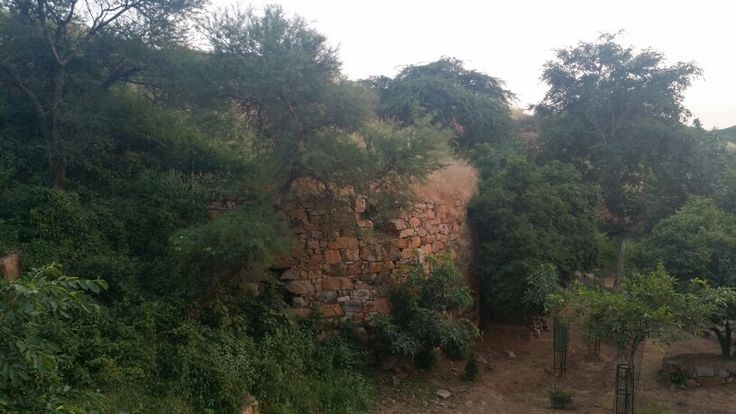 Walls of Lal Kot  http://t.co/NrdlxfZf7m http://t.co/TFYn6GaLXt #WhereStonesSpeak  My ode to Delhi's First City
