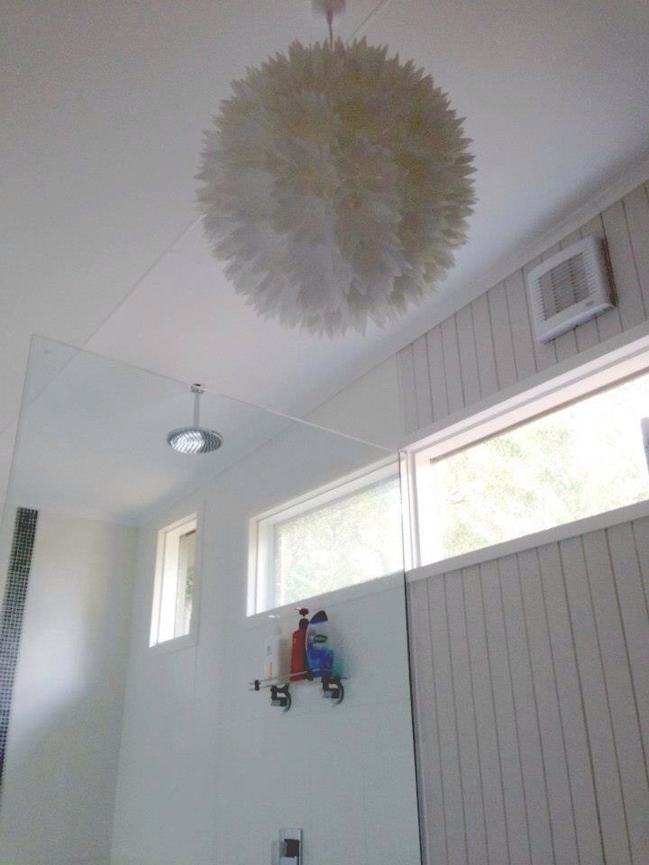 Pendant light and overhead shower