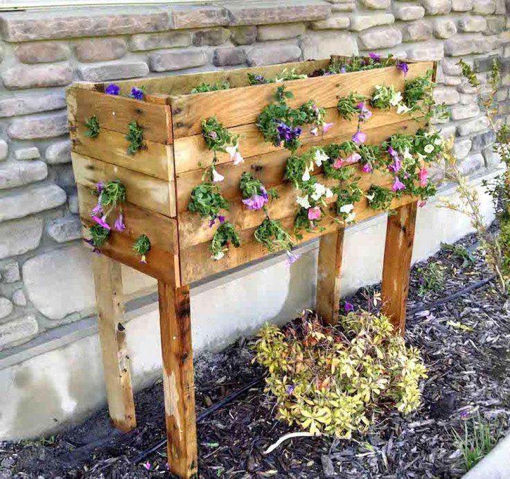 50 best plante et jardin images on pinterest gardening plants and for the home. Black Bedroom Furniture Sets. Home Design Ideas